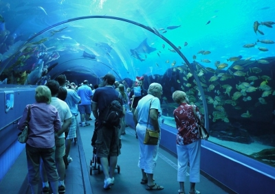 """Georgia Aquarium Acrylic Tunnel"" by randomwire is licensed under CC BY-NC-SA 2.0"